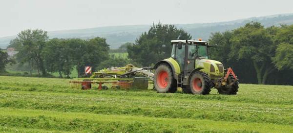 Ekologiškas ūkininkavimas